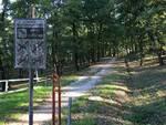 bosco dei frati san romano montopoli valdarno