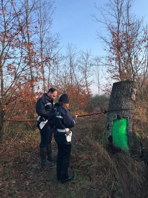Controlli antidroga a Fucecchio, smantellate tre postazioni dei pusher sulle colline delle Cerbaie