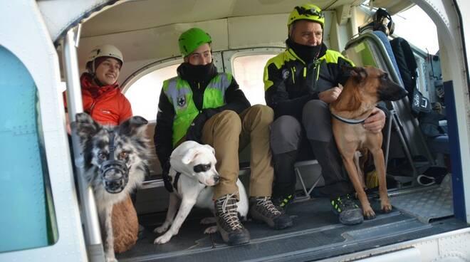 Esercitazione a Tassignano per l'unità cinofila di soccorso