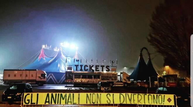 Striscione contro il circo a Lucca