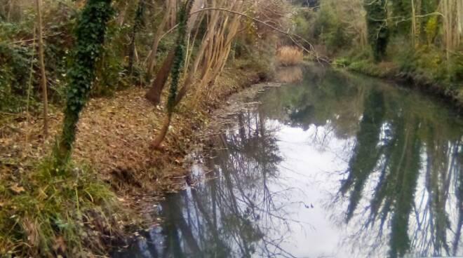 Fiumetto pulizia Pietrasanta consorzio di bonifica Toscana Nord