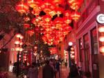 giulio nardinelli in cina a hong kong e macao gennaio 2020