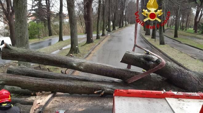 vento 26 febbraio 2020 provincia pisa