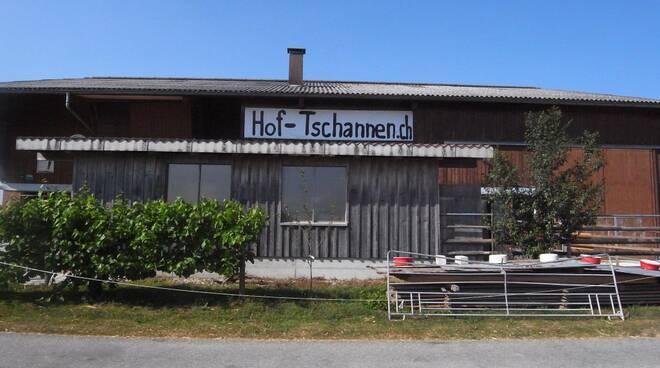 Dormire sul fieno alla fattoria Bauernhof Tschannen: un reality vero