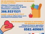 Spesa a domicilio Comune di Lucca