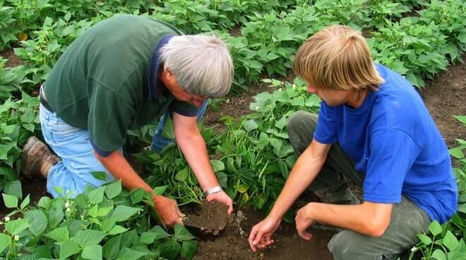 Apprendistato in agricoltura