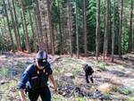 carabinieri forestali di Lucca