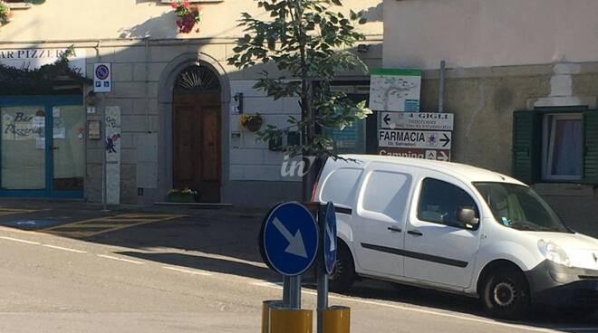 Pianta sulla rotonda di Montopoli