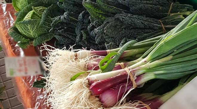 verdure fresche cibo mercato contadino Marlia