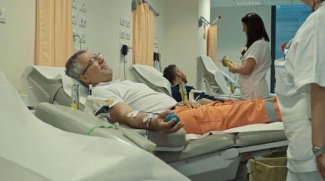 donazione sangue plasma Croce Verde Lucca