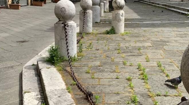 L'erba cresce in strade e piazze del centro storico