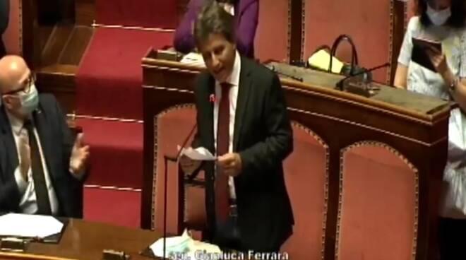 senatore Gianluca Ferrara Movimento Cinque Stelle