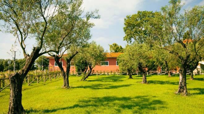 Villa Filippo Berio