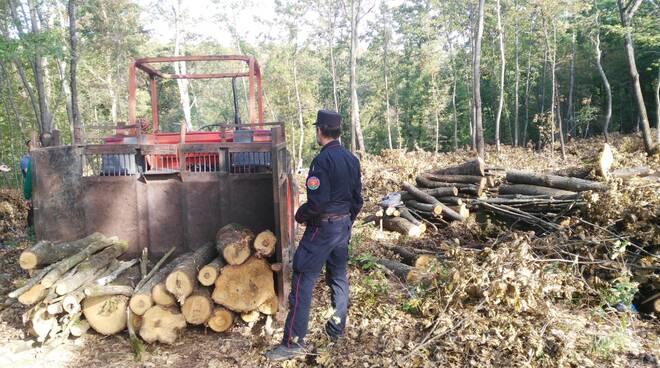 controlli cantiere forestale Montaione carabinieri