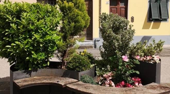 Fiori in piazze e strade di Borgo, i cittadini fanno da soli
