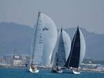 Le vele del cuore Club nautico  Viareggio