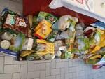 raccolta cibo animali Anpana Lucca