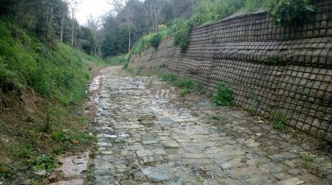 strada medievale cerbaie sulla collina di montefalcone