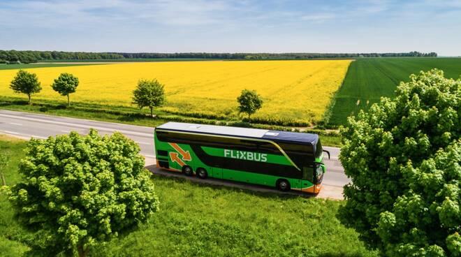 flixbus immagini nuove manager incondi