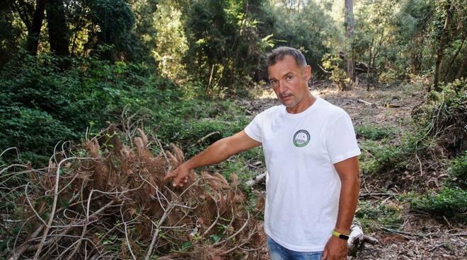 Alfredo Cordoni candidato Per la nostra terra Viareggio e Torre Del Lago e Partite Iva