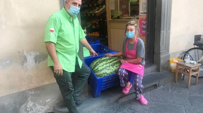 cocomero gigante Ortofrutta Lucca Centro Lucca
