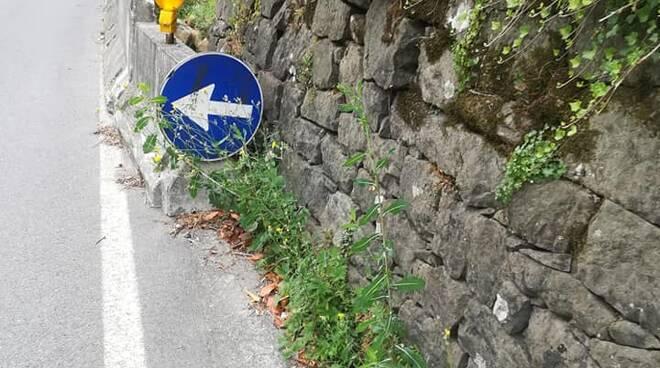 Disagi e code al semaforo di Ponte a Diana