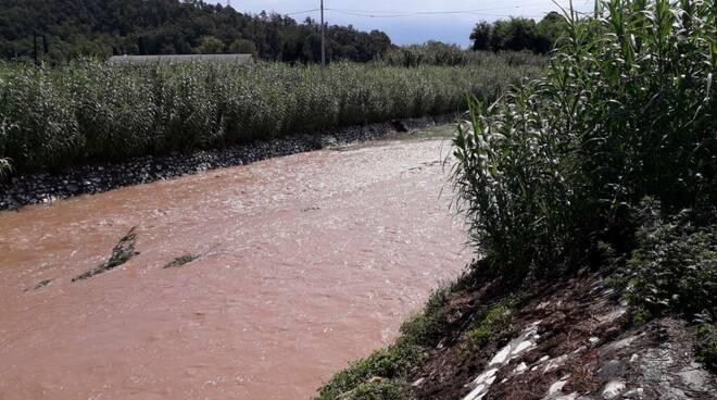 torrente Freddana