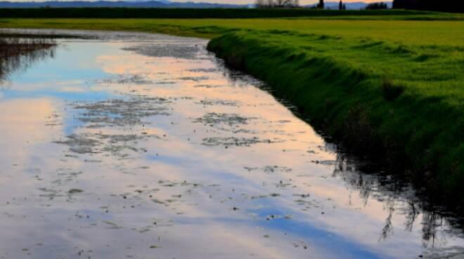 Canale usciana Padule di fucecchio