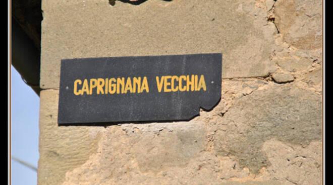 Caprignana Vecchia insegna