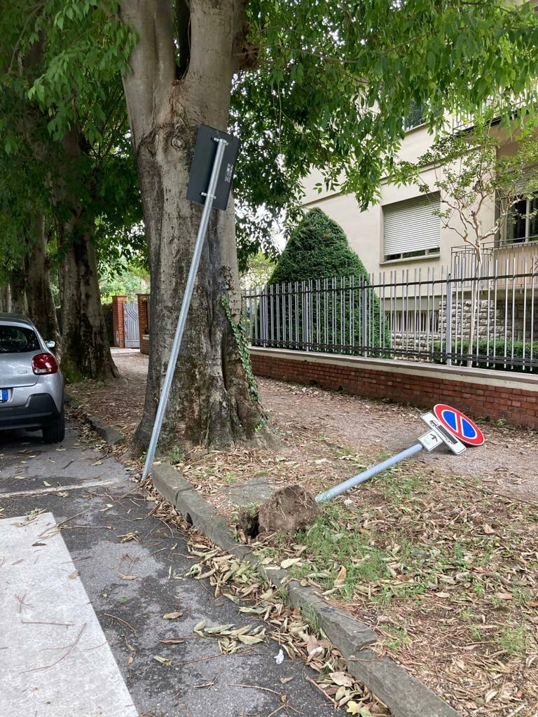cartelli divelti via Iacopo della Quercia Lucca