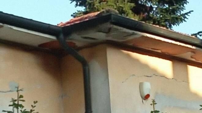 scuola elementare di Saltocchio