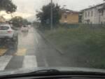 via del Casalino erba alta marciapiede