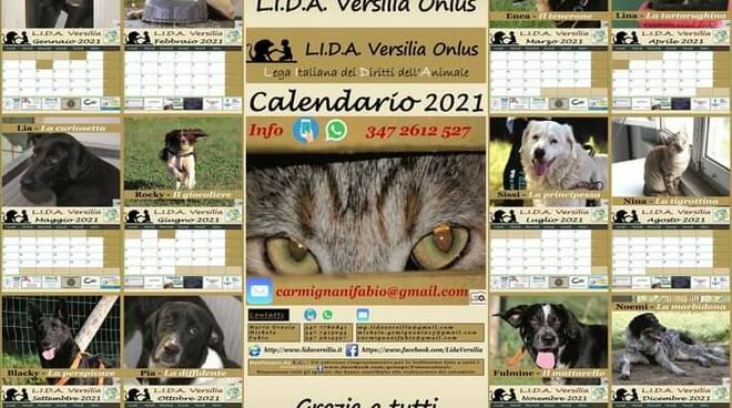 calendario 4 zampe fotoscattosi associazione Lida