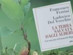 La terra salvata dagli alberi libro Agorà