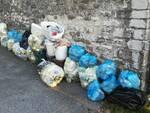 spazzatura Ombreglio di Brancoli ritiro Sistema Ambiente