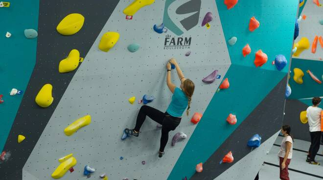 The farm boulder gym Guamo