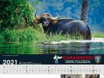 Calendario Forestali