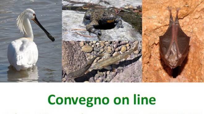 convegno on line Padule di Fucecchio
