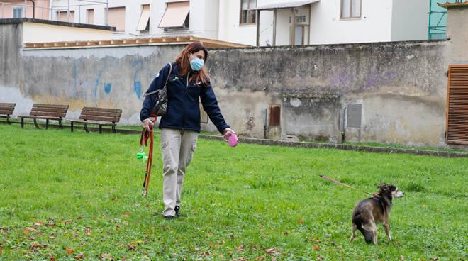 Famiglie in quarantena ma i cani no: li portano fuori i volontari