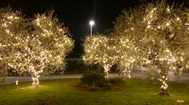 Natale 2020, gli addobbi a Castelfranco di Sotto