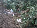rifiuti nelle banchine di fucecchio