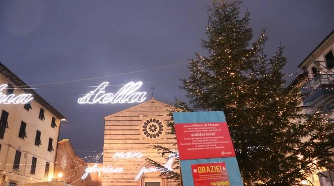 albero piazza San Francesco Natale