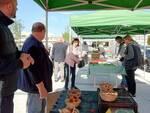 Capannori mercato piazza Aldo Moro