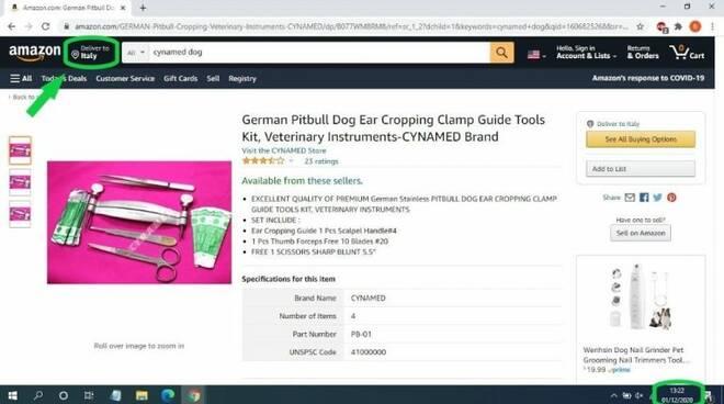 kit taglio orecchie su Amazon