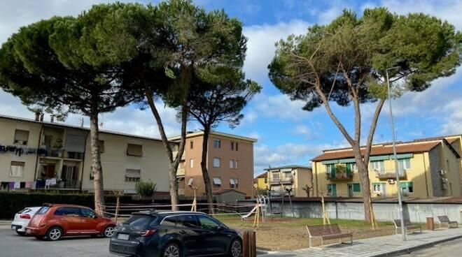 alberi abbattuti a san concordio