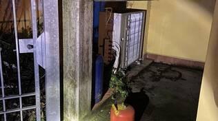bombole davanti alla sede di forza italia a San Concordio