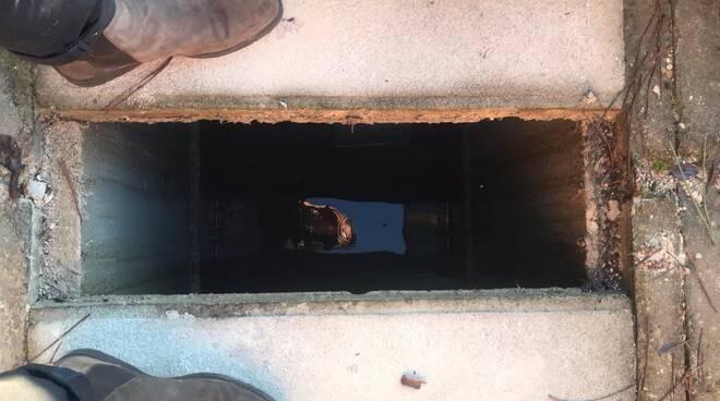 cimitero via Sbarra Porcari infiltrazioni acqua