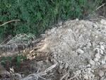 forestali a certaldo