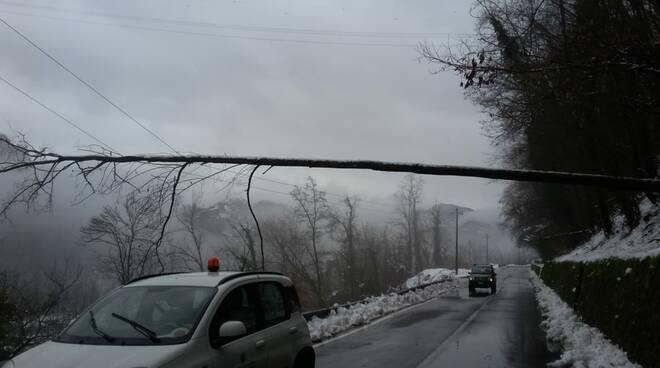 interventi strade chiusure neve provincia Lucca