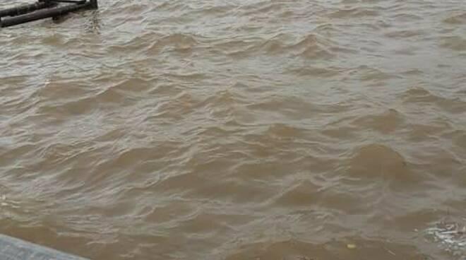 Lago di Massaciuccoli in piena